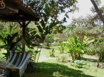 Katydid hammock