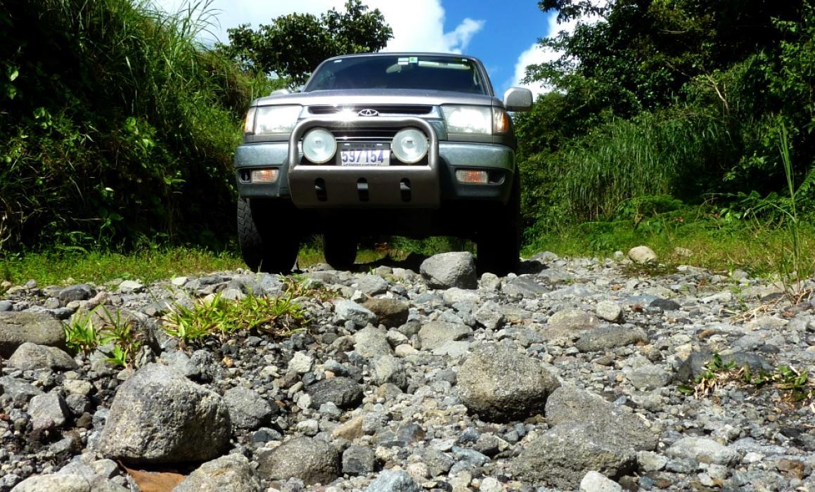 P1150721cano