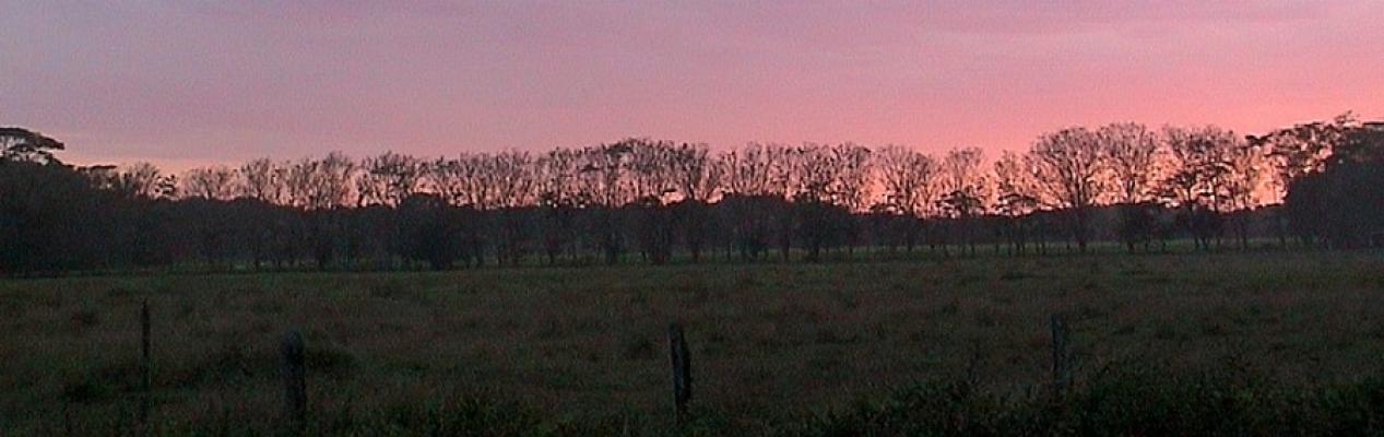 sunsetpuerto jimenezaa