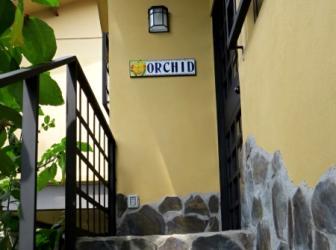 Orchid entrance