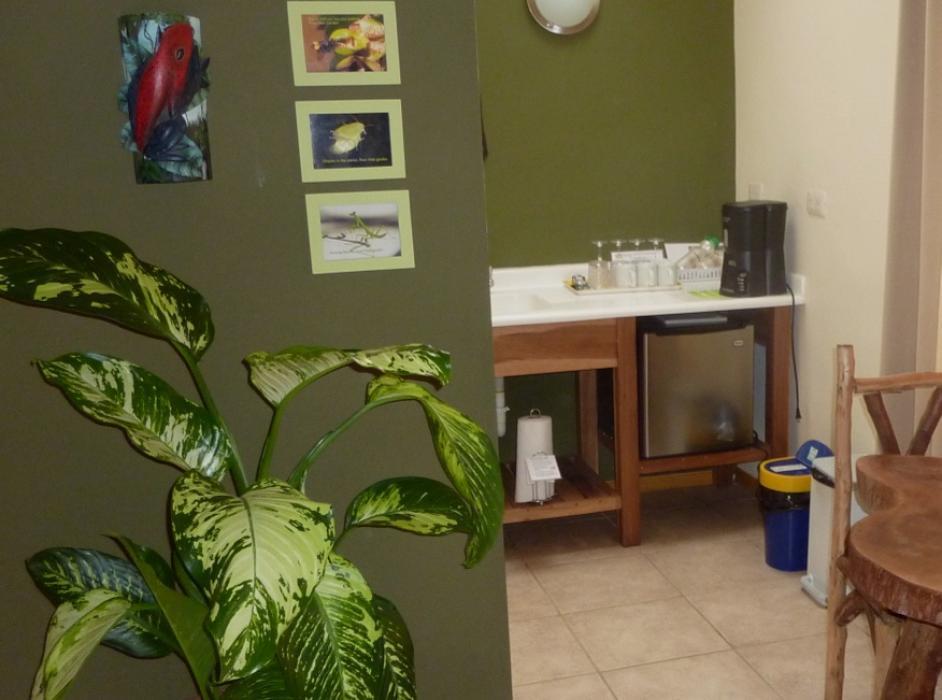 Rain Forest Casita kitchenette