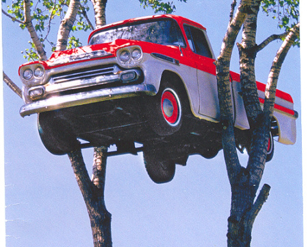 car in a tree